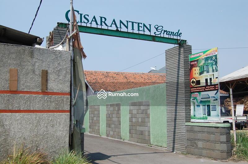 Cisaranten Grande #0