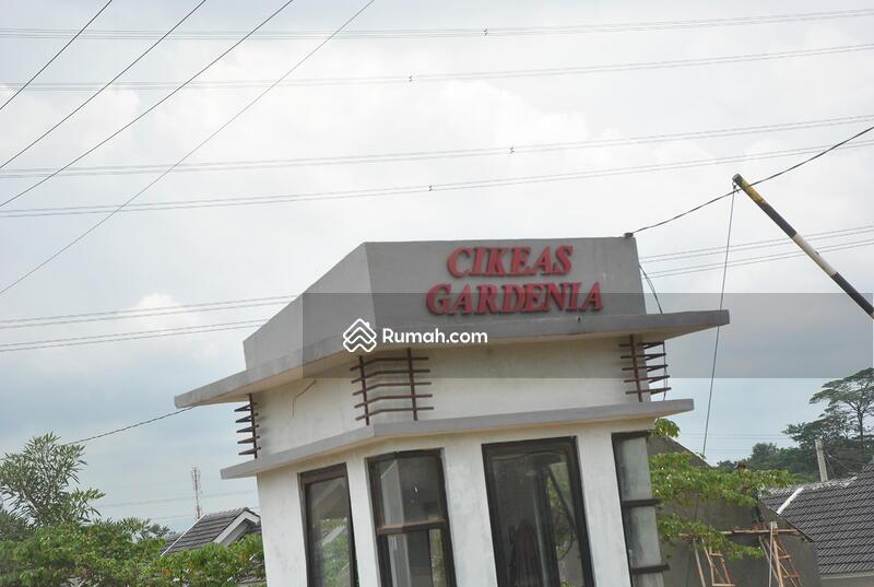 Cikeas Gardenia #0