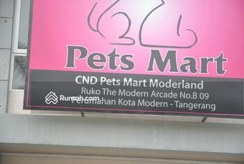 Modern Land Modern Arcade