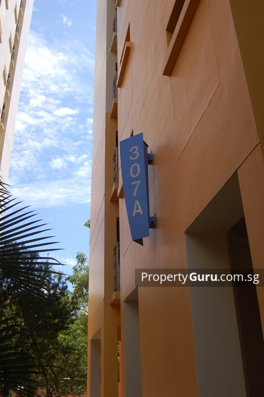 307A Anchorvale Road #0