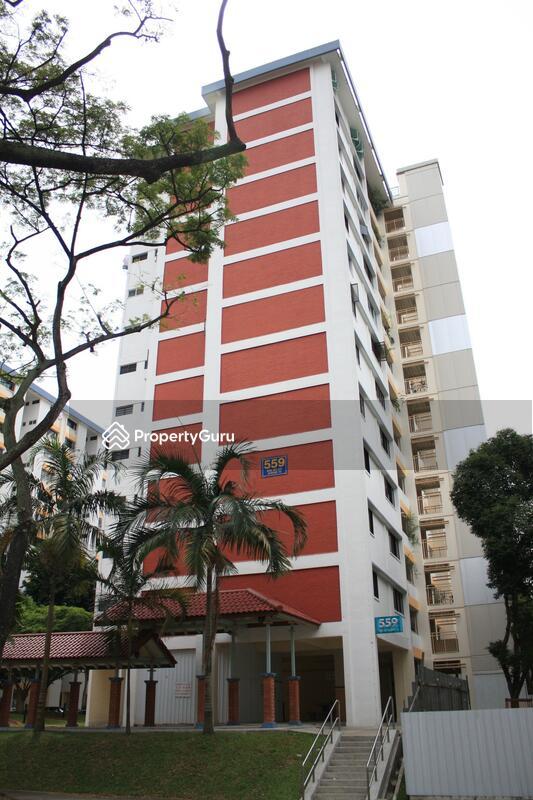 559 Ang Mo Kio Avenue 10 #0