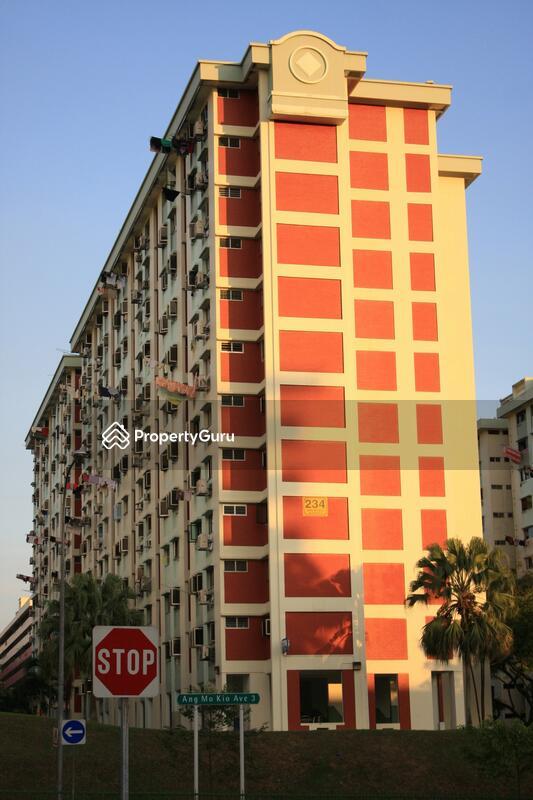 234 Ang Mo Kio Avenue 3 #0