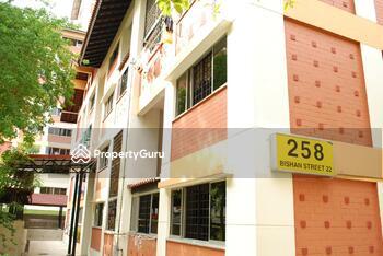 258 Bishan Street 22