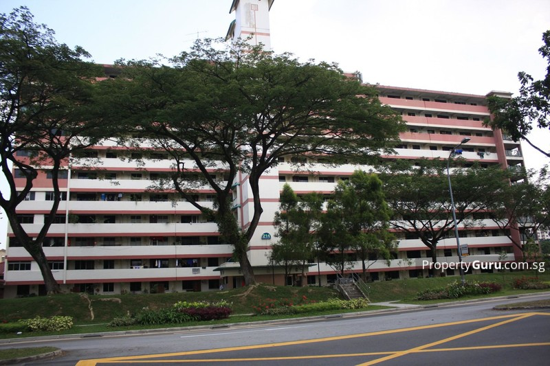 214 Boon Lay Place #0