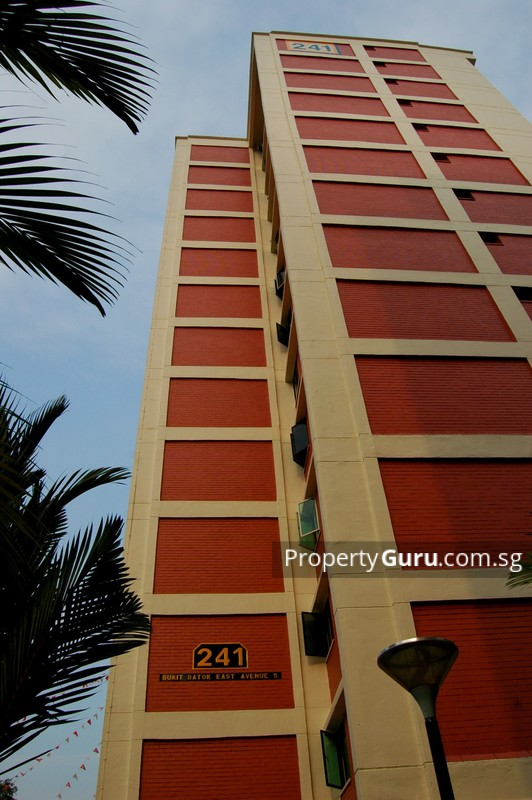 241 Bukit Batok East Avenue 5 #0