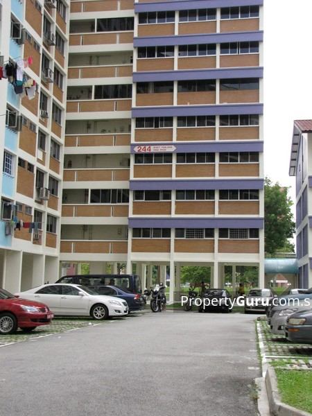 244 Bukit Panjang Ring Road #3806756