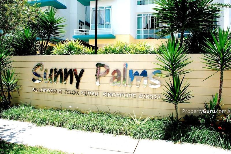Sunny Palms #1428